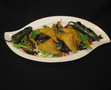 Wontons | Above & Beyond Catering | Picture Gallery